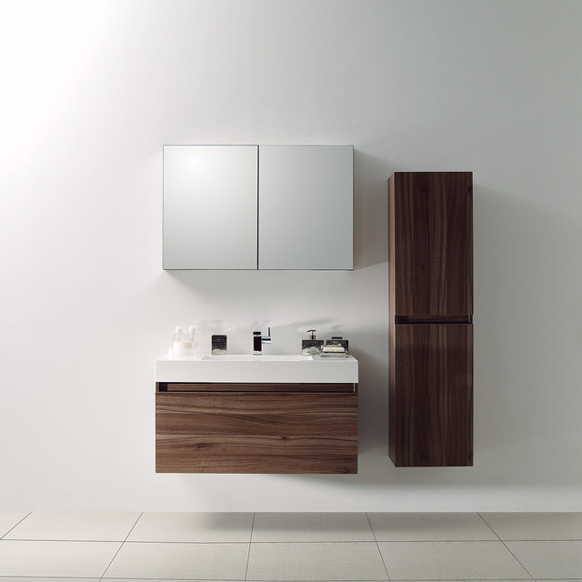 Contemporary Bathroom Sink and Cabinets